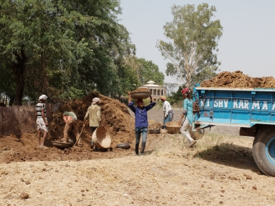Mama labour from MP lifting gobar manure