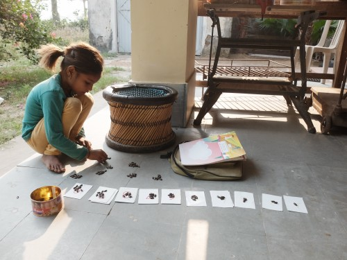 Ritu Learning to Count with Seeds Oct 2020